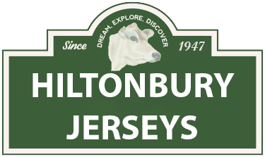 Hiltonbury-Jerseys